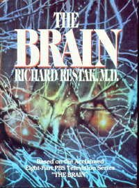 Image for The Brain